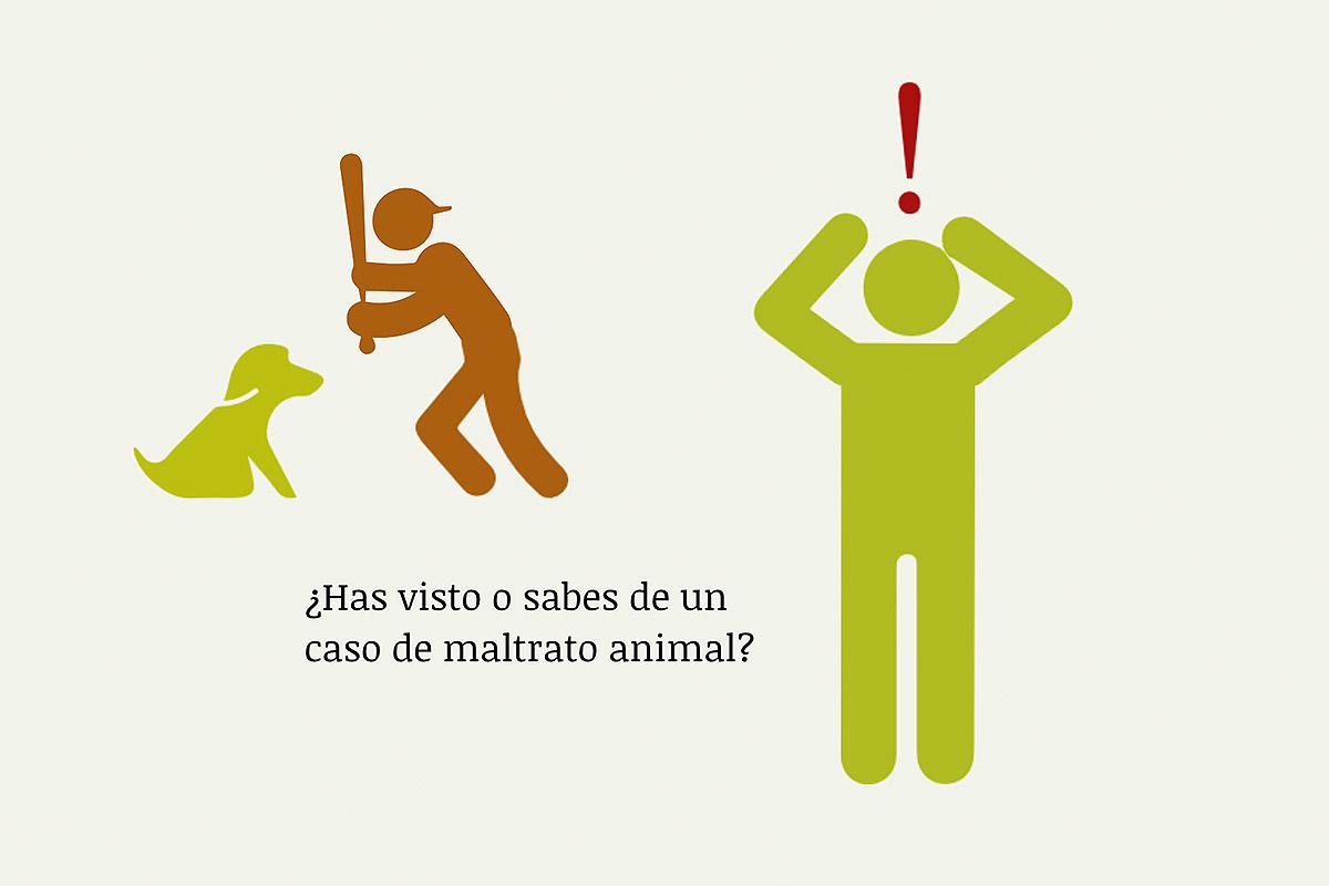 denunciar el maltrato animal