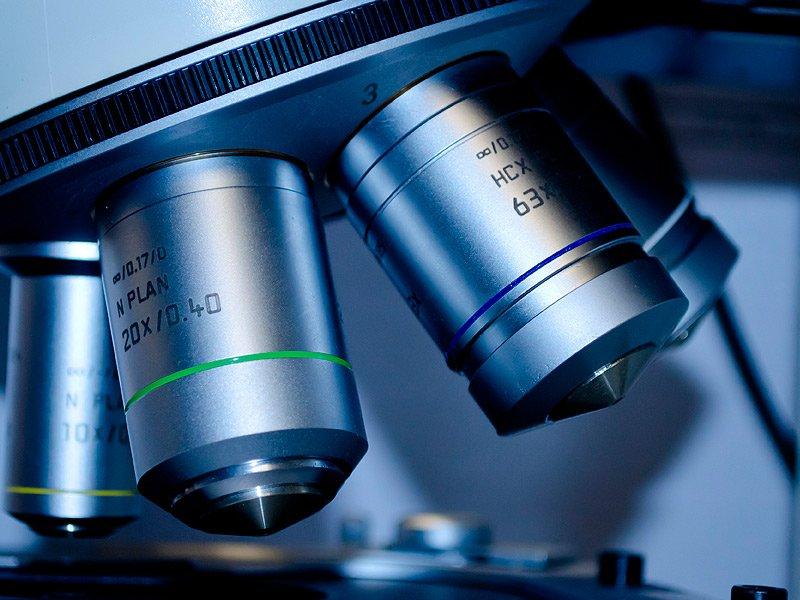 Clínicas Veterpet servicios de laboratorio y análisis las 24h