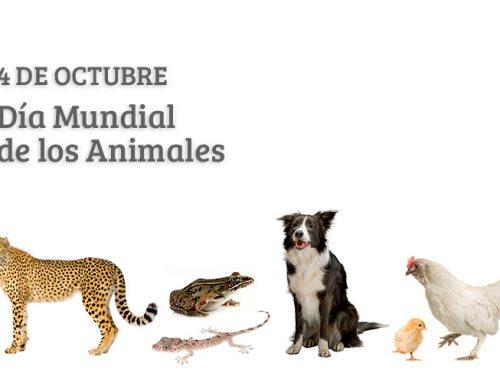 Día Mundial de los Animales 2021